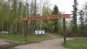 birchwood-trail-head